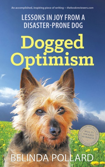 Dogged Optimism